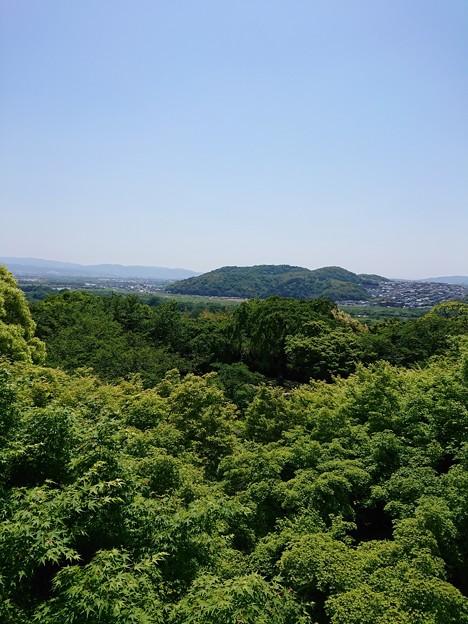 大山崎山荘からの眺め