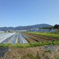 写真: P1010044