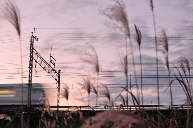 暮れ行く多摩川橋梁とE233系快速電車