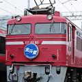 Photos: EF81型 電気機関車 北斗星 ヘッドマーク