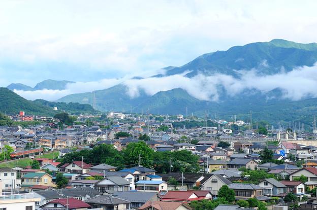 渋川~金島