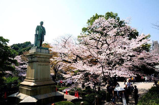 品川弥二郎像と桜