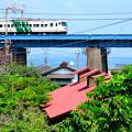 写真: 玉川橋梁を渡る185系特急踊り子