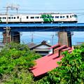 写真: 夏に向かう鉄橋