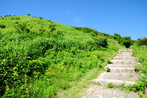 夏への登り口