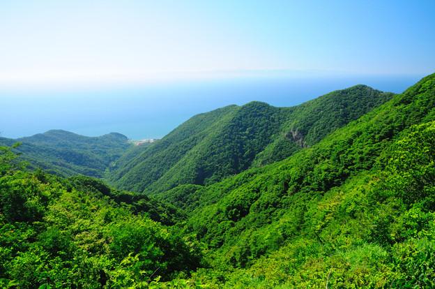 弥彦山頂からの眺め