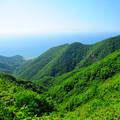 写真: 弥彦山頂からの眺め