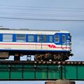 信濃川を渡る115系電車