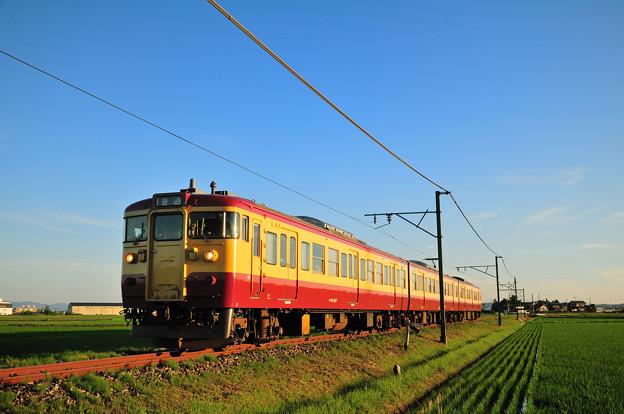夕日を浴びて快走する115系電車