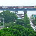 Photos: 日本海を見下ろす鉄橋を渡る