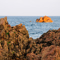 写真: 沖から染まり始める