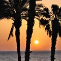 Photos: マルタ島の日の出