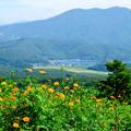 写真: 黒姫高原