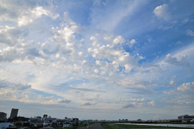 Photos: 堤防の舗道から