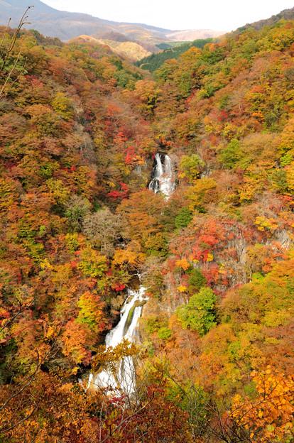 錦秋の霧降の滝