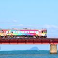 写真: 鮮やかな列車