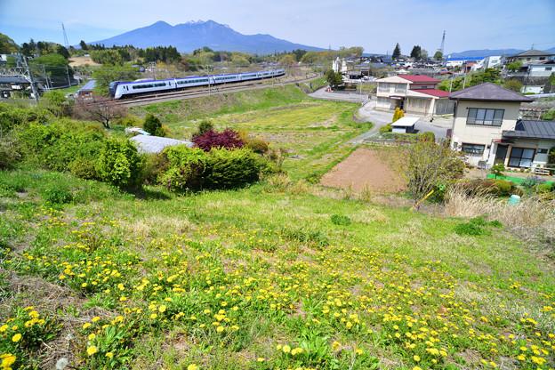 Photos: 八ヶ岳とたんぽぽとE351系特急あずさ号