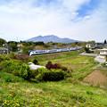 八ヶ岳とたんぽぽとE351系特急あずさ号