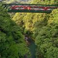 Photos: スイスの登山電車風真っ赤な電車が通過
