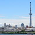 スカイツリーと京成電車