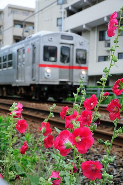 東急蒲田線