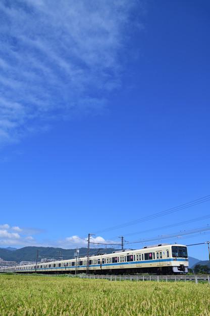 8000形電車と青空と稲穂
