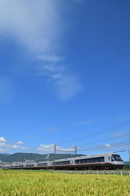 Photos: 青空と稲穂とロマンスカー