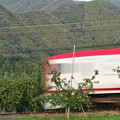 Photos: リンゴ畑を駆け下りる