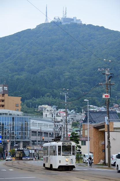 函館山をバックに