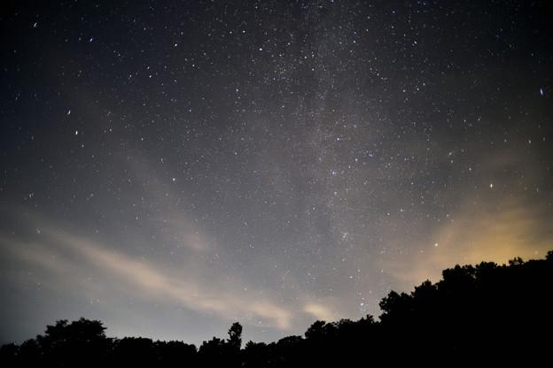 Photos: 森へ帰る星座たち