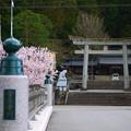 写真: 高山にて