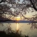 Photos: 海津大崎からの日の出