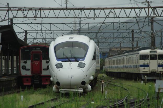 IMGP5006