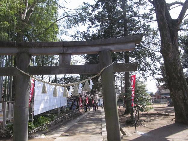 初雁公園(三芳野神社)