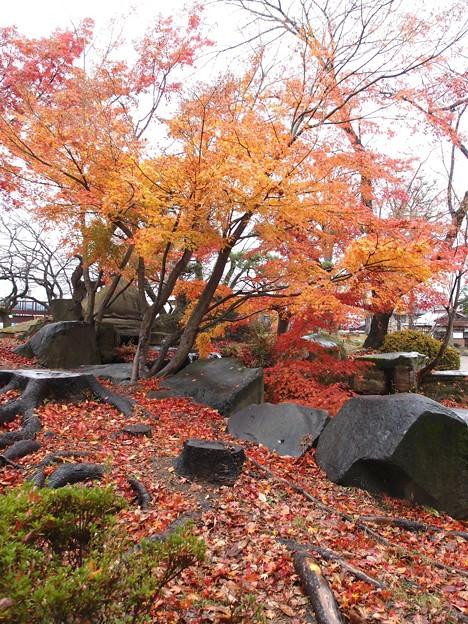 写真: 06_高島城