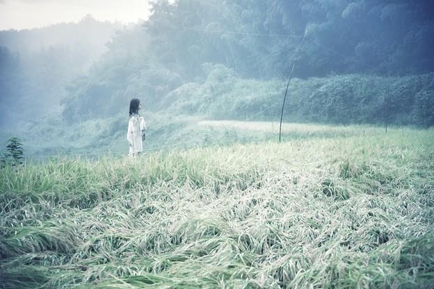 Photos: a girl