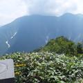 白毛門山頂