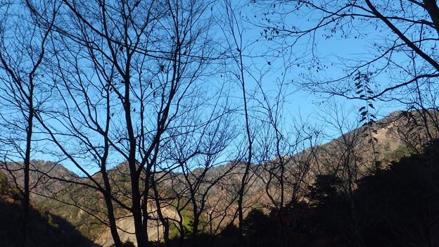 六呂場、不動岳稜線