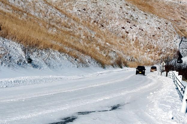 雪上のビーナスライン