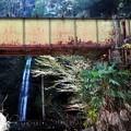浄心の瀧の手前に廃線鉄橋