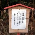 「名瀑・金七の瀧」説明版