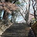 蔵澤寺参道階段