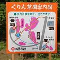 くりん草園案内図