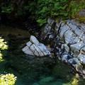 写真: 亀石