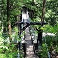 写真: 赤彦吊り橋
