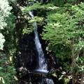 写真: 六段の滝