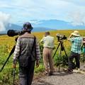 写真: 野鳥撮影カメラマン達