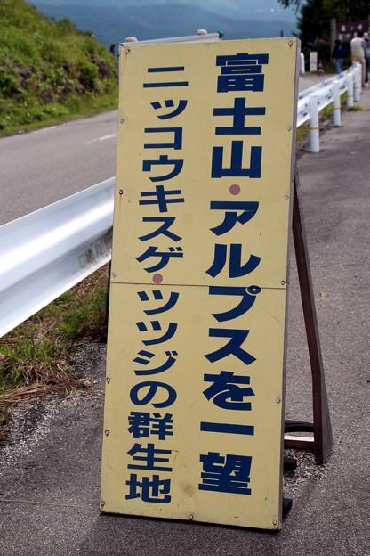 写真: 富士山・アルプスを一望・「富士見台」ニッコウキスゲの群生地