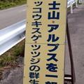 富士山・アルプスを一望・「富士見台」ニッコウキスゲの群生地