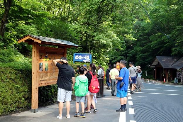 海外からの観光客